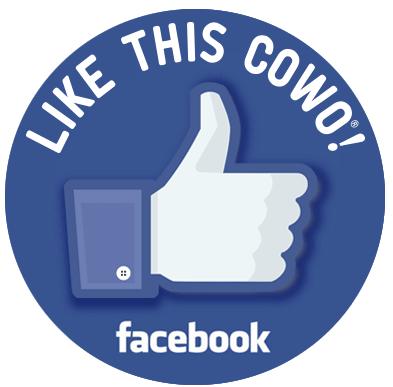 Facebook Coworking Firenze